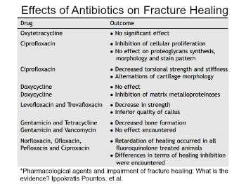 Effects of Antibiotics on Fracture Healing