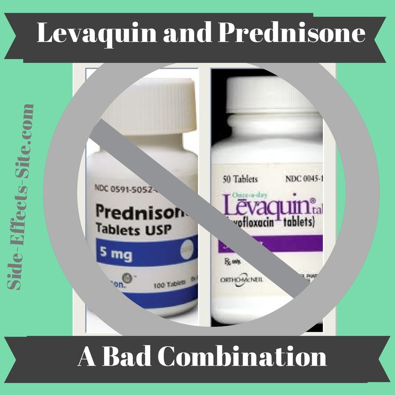 Levaquin and Prednisone are a bad combination