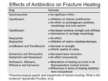 Effects of Antibiotics on Fracture Healing